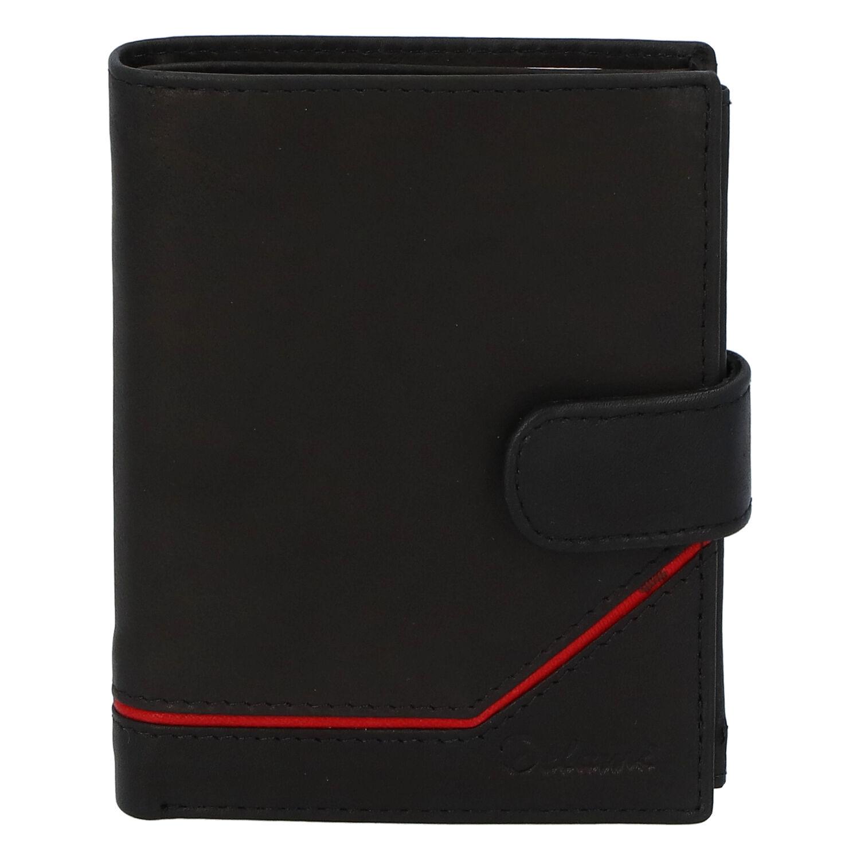Pánská kožená peněženka černá - Delami Euro 2
