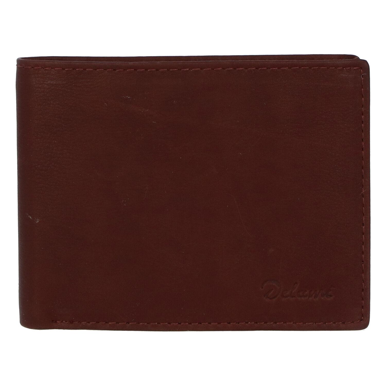 Pánská kožená peněženka hnědá - Delami Archard Two