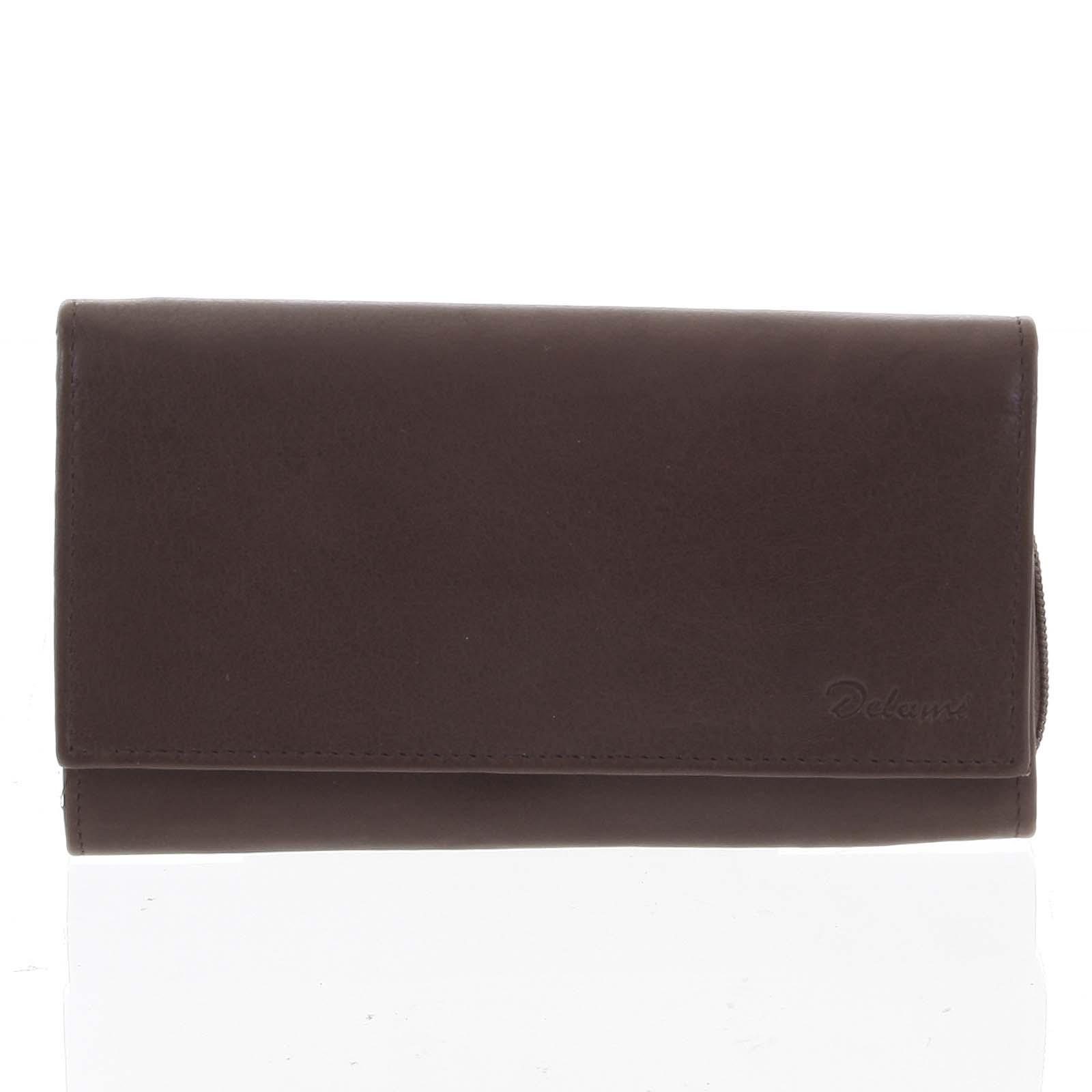 Stylová hnědá dámská peněženka - Delami Vippe